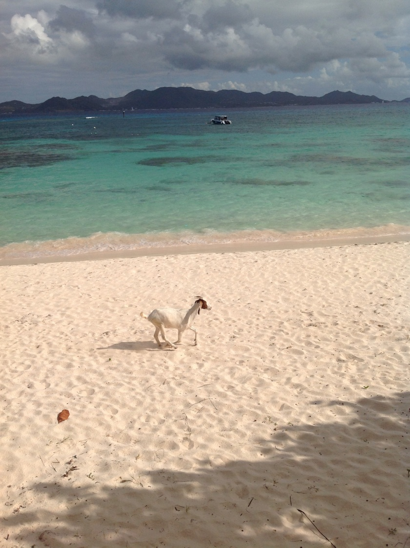 Everyone loves the beach in Anguilla!