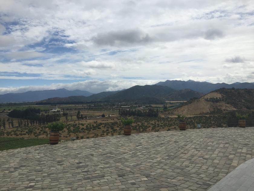 Casablanca Chile wine valley