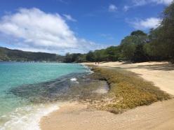 Low Bay Beach